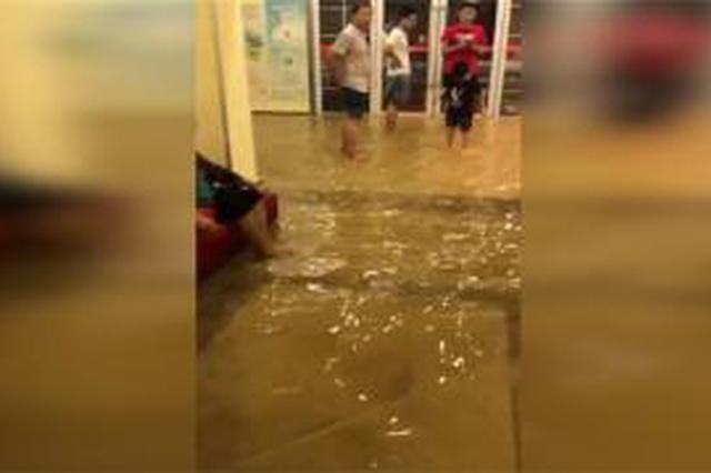 浦东一施工处水管爆裂 百户居民家中进水达十几厘米深