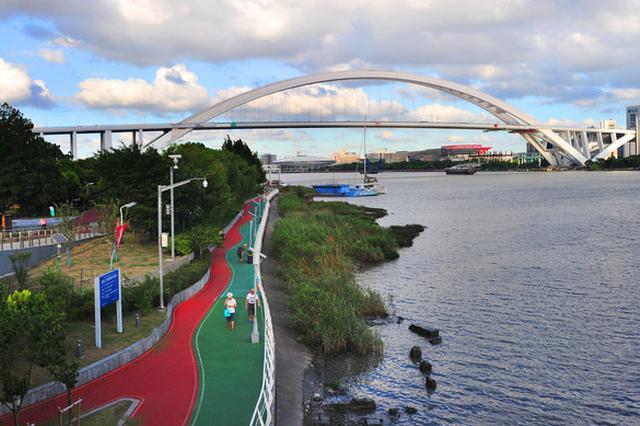 黄浦江45公里滨江岸线开发规划:塑造和而不同区段特色