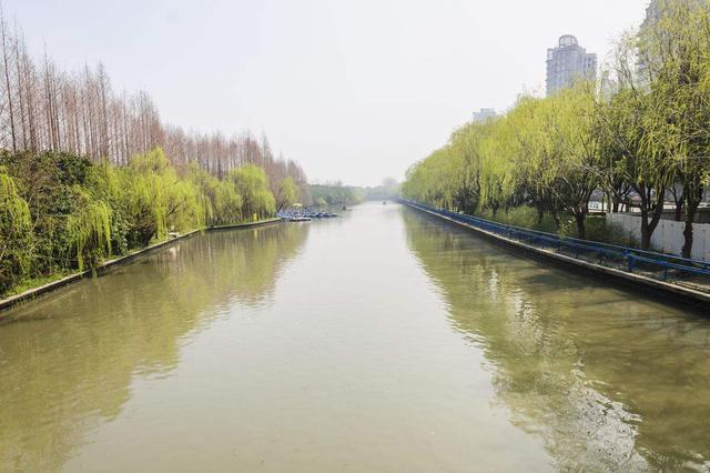 沪上两条河道及其河长被点名通报 水质持续黑臭
