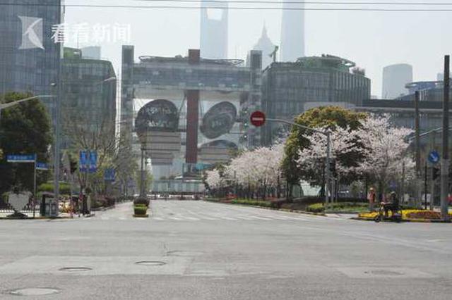 上海新增10条绿化特色道路 春花秋色四季有景