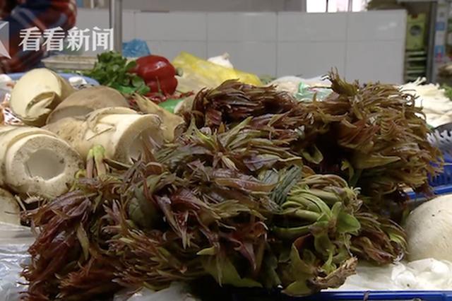 申城时令蔬菜上市 香椿头零售价每斤最高130元