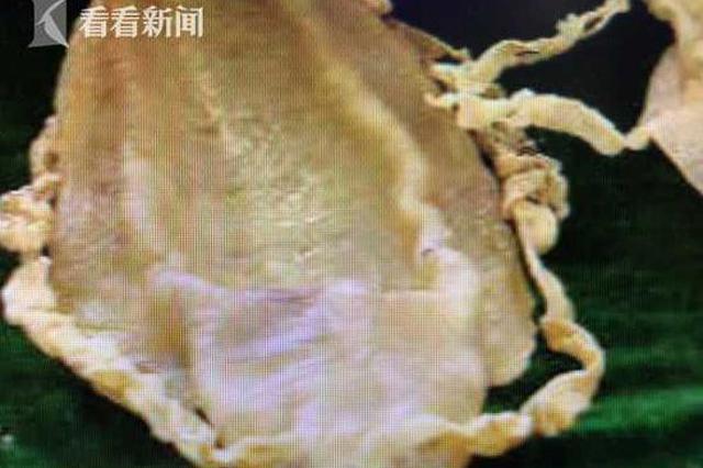 上海海关截获一批走私鱼鳔 市值高达上千万元