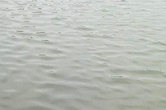 游客拍照手机掉河里 保洁员下水帮其寻回手机