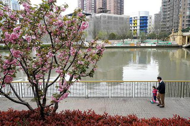 上海今年建百个美丽街区 苏州河两岸42公里明年底贯通