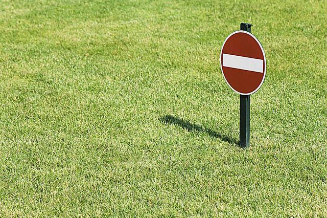 沪多座公园禁止在草坪上搭帐篷 园方建议制定游园指南