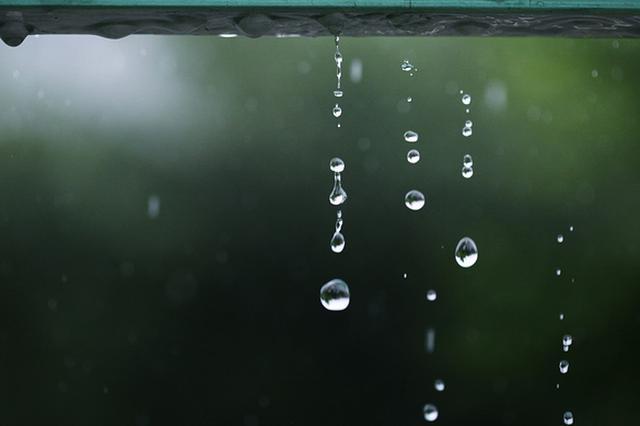 上海本周工作日被雨水承包 或出现两次雷电黄色预警