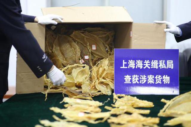 孕妇走私122个石首鱼鱼鳔在机场被带走 价格堪比黄金