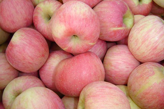 生果涨价产地追踪:客岁倒春寒让苹果减产30%