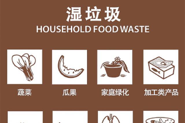 四分类不克不及精确区分所有垃圾 市平易近建议用更直白的名称