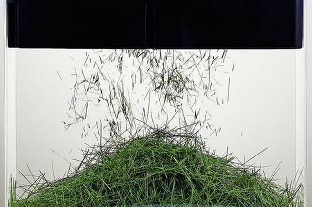 垃圾分类催生处理神器 破裂摧毁机、堆肥机在上海吃垃圾