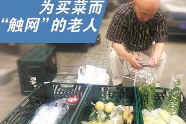 为买菜而触网的白叟:技巧鸿沟至今仍存在