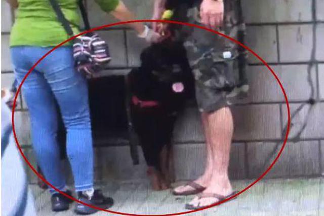上海街头一罗威纳猛犬咬伤日籍女子 禁养名录排第三