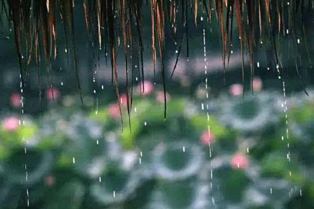 申城今年梅雨时间长雨量超常年 17日之后气温明显上升