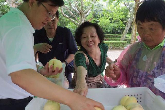 上海本地鲜果约17万吨上市 地产优质果品进公园直销