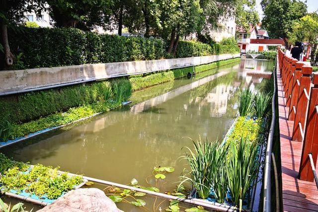 长宁今年河道全消除劣V类 河道蜕变让民众获得感满满