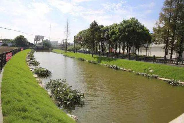 苏州河环境整治四期工程稳步推进 两岸断点已打通21处