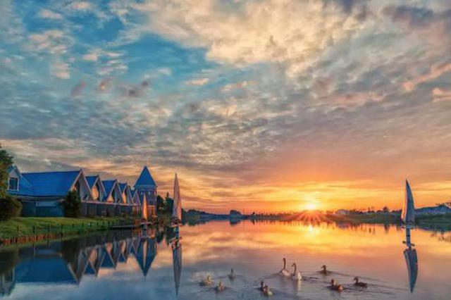 漕泾郊野公园规划亮点抢先看 可享受亲水之乐秋收之美