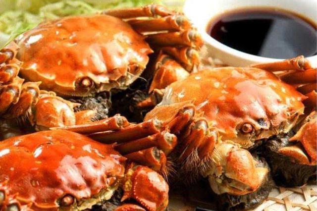 本年阳澄湖大年夜闸蟹产量不低规格较大年夜 周六将启动试捕