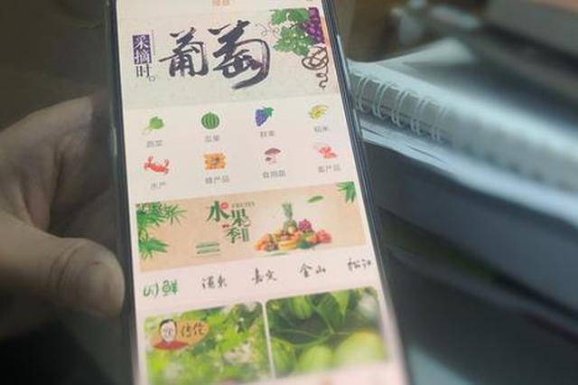 上海地产绿色农产品认证率将达30% 市平易近可经由过程app查询