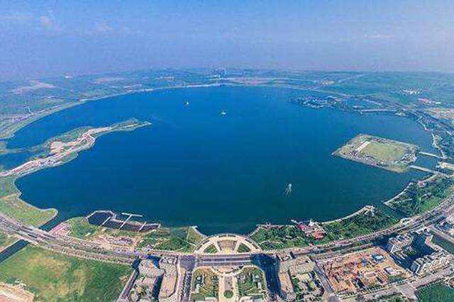 上海44家市属国企走进临港 全力参与和服务新片区建设