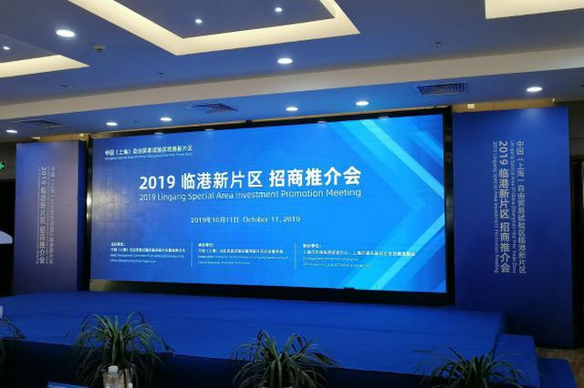 临港新片区初次举办招商推介会 企业积极对接望早落地
