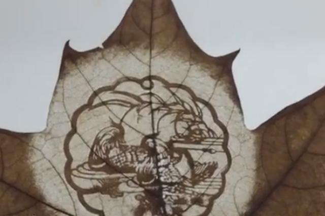 上海推出落叶艺术节 市平易近街头感触感染落叶文化