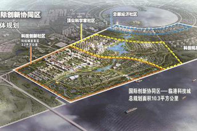 临港新片区主城区未来发展空间布局发布 推出三大区域