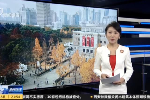 上海音乐厅打造季节限定演出 银杏树下寻梦三生
