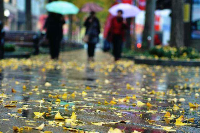 申城下周初快速升温最高可达20-21℃ 8日开始急剧降温