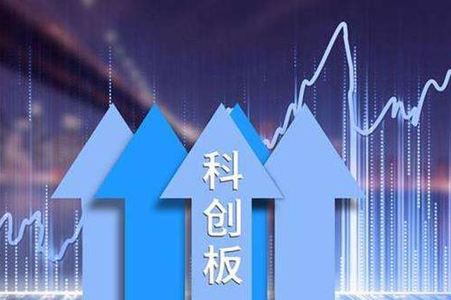 去年上海企业科创板上市已达13家 位居全国第一