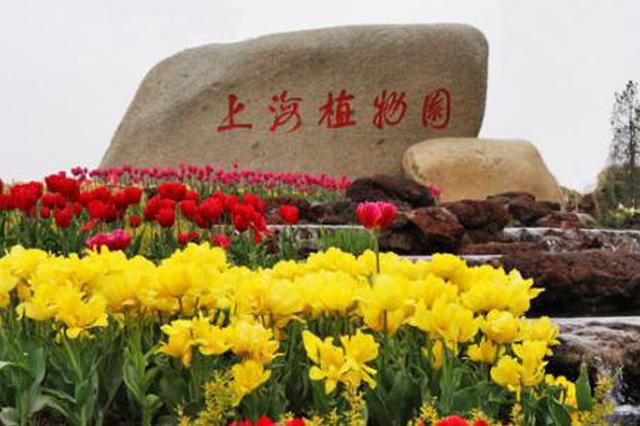 上海植物园北区改扩建工程列入市重大年夜预备项目