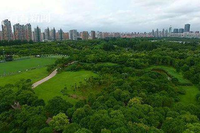 今年清明小长假上海城市公园游客量同比下降近五成