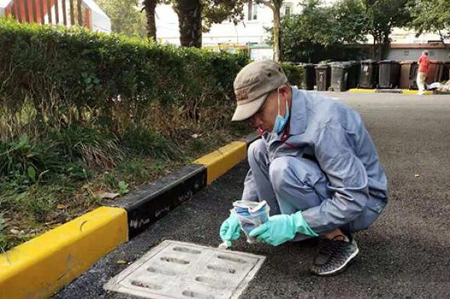 蚊虫孳生率呈上升趋势 上海7-9月开展灭蚊专项行动