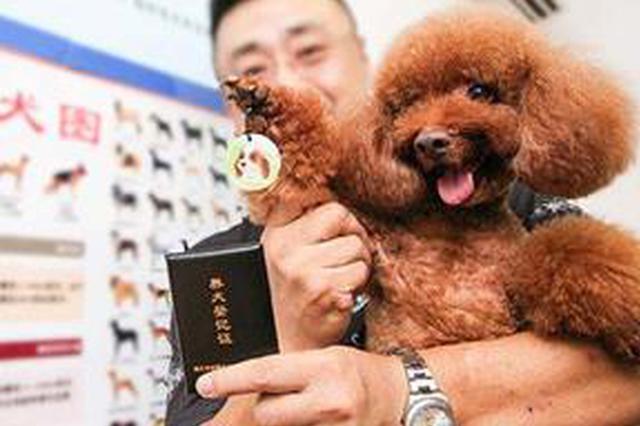 上海提升养犬办证含金量便利度 开通线上养犬登记
