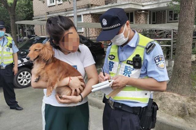 直击上海遛狗不牵绳罚款现场 2个月超800位铲屎官受罚