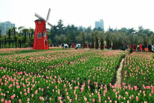 上海各大公园精彩活动让人目不暇接精彩不断 热闹胜过年