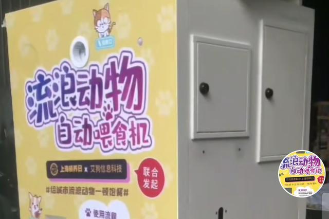 上海流浪动物自动喂食机引争议 学者:表达善意但需商榷