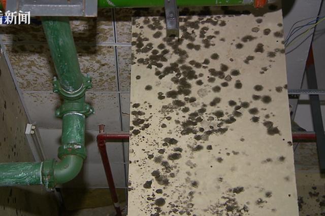 嘉定瑞立万立城小区水臭到不能喝 余氯不合格是主要原因