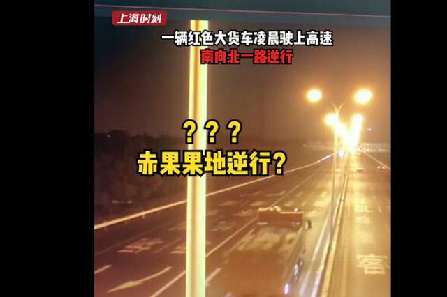 上海一大货车凌晨高速路逆行 警方连夜追查锁定驾驶员