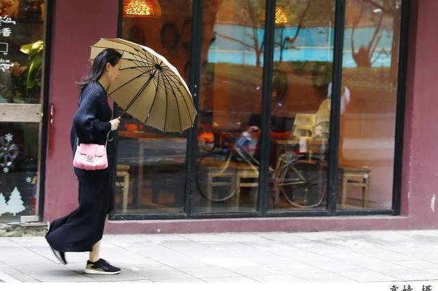 上海受冷空气影响降温风力增大 下半年最冷早晨在周六