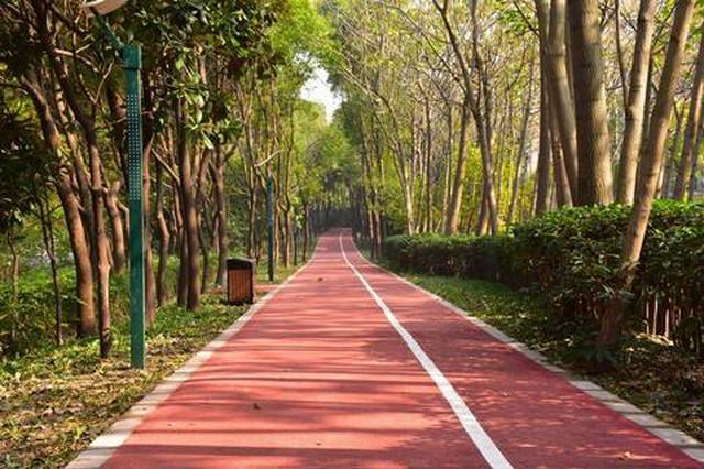 上海绿道已全面完成十三五规划建设目标