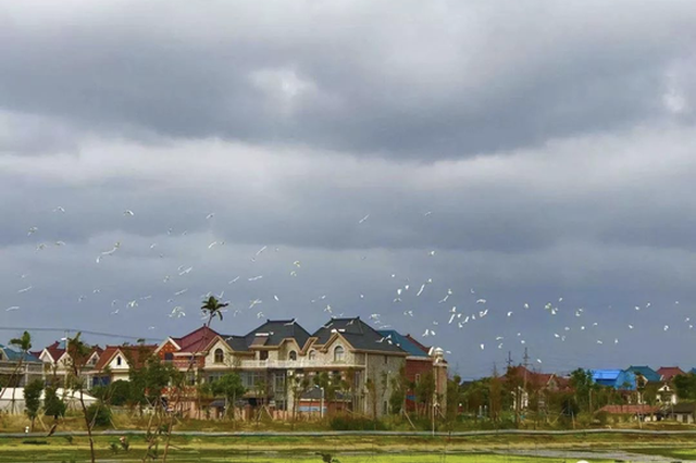 第十批全国一村一品示范村镇名单公布 上海5个村镇入选