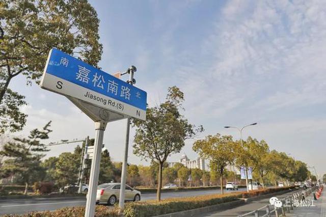 嘉松南路景观大道绿化提升工程启动 预计6月底竣工