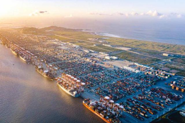 洋山港去年集装箱吞吐量超两千万标箱 上海港领跑全球