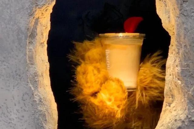 熊爪咖啡新店将于本周六试运营 计划春节前再开两家