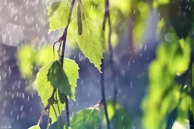 申城入春进程再次被中断 本周即将开启雨雨雨雨的节奏