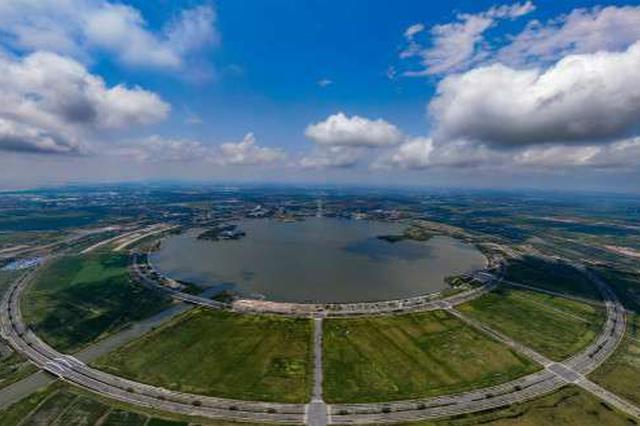 臨港新片區推突破性政策 將建國際較大影響力營商環境