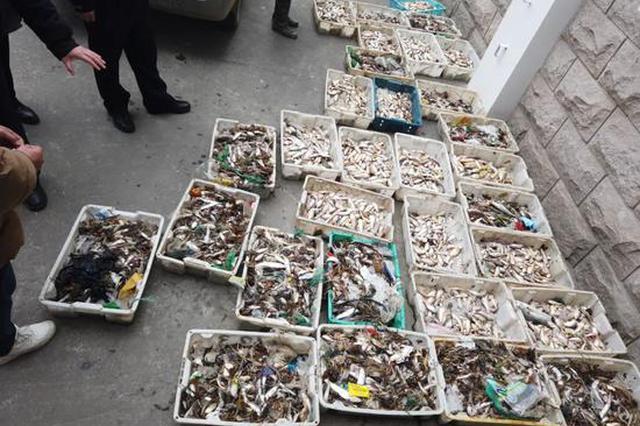 长江上海段水域破获2021年首起非法捕捞案 15人被捕