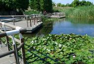 魔都世博区域三大免费公园