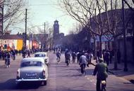 上海老照片藏各年代当红汽车